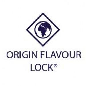 origin_flavour_lock-03