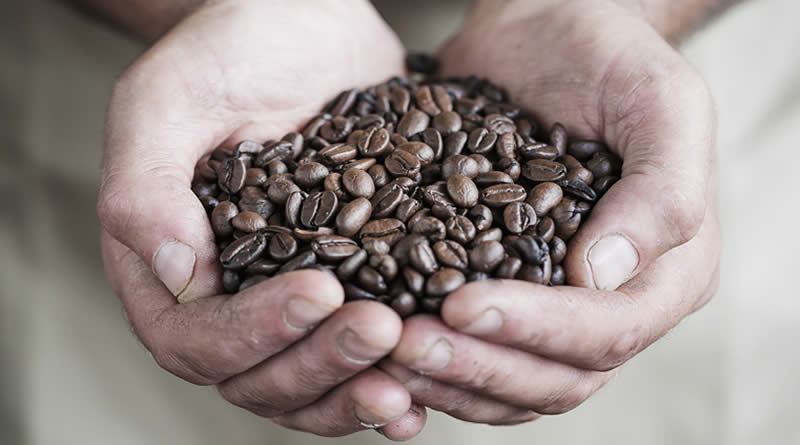 Coffee Beans Ireland